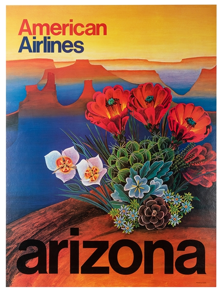 Arizona. American Airlines.