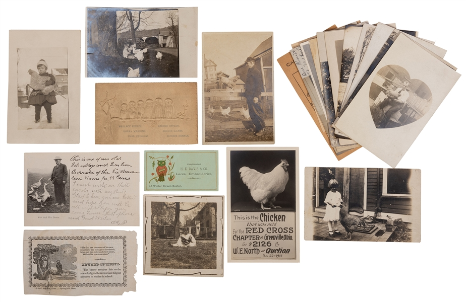 Group of Postcards and Ephemera featuring Owls, Chickens, Ducks, and other Birds.