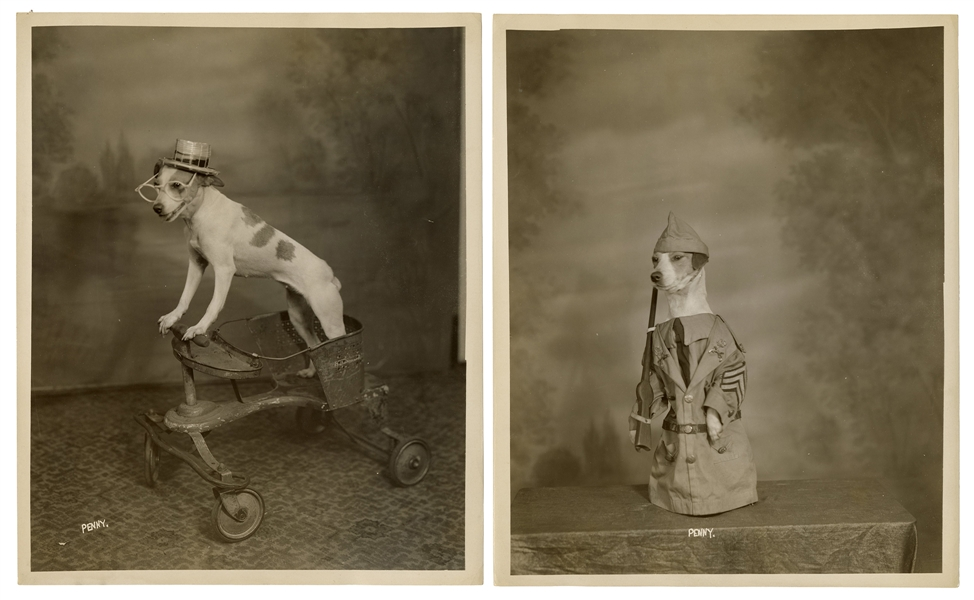 Four Amusing Photographs of a Performing Dog and Its Trainer, Penny and Thurston.