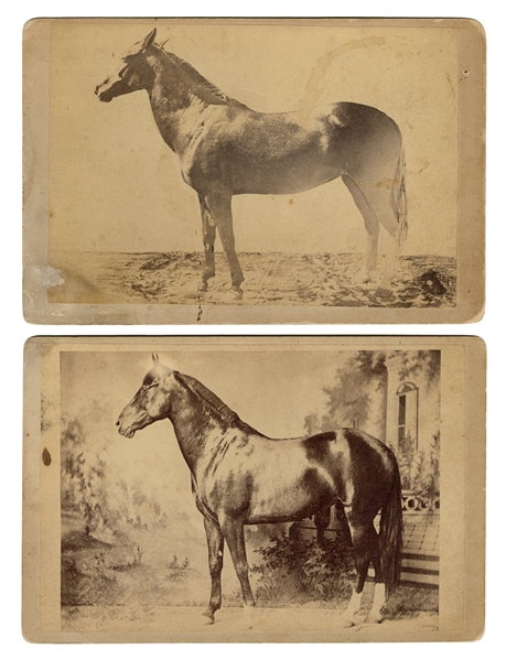 Pair of Professor Bartholomew's Equine Paradox Cabinet Card Photographs.