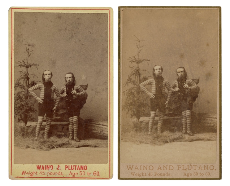 "Pair of Waino and Plutano ""The Wild Men of Borneo"" CDVs."